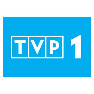 TVP1, Tematyka ogólna